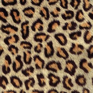 Printed Patterns – Animal Skins