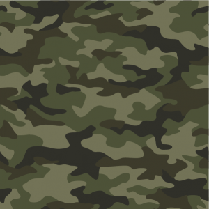 Printed Patterns – Camo